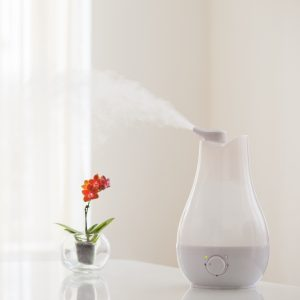 Small Humidifier with Flowers