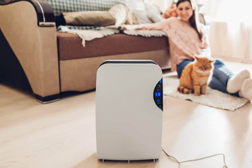 Best Air Purifier For Mold Cover Photo